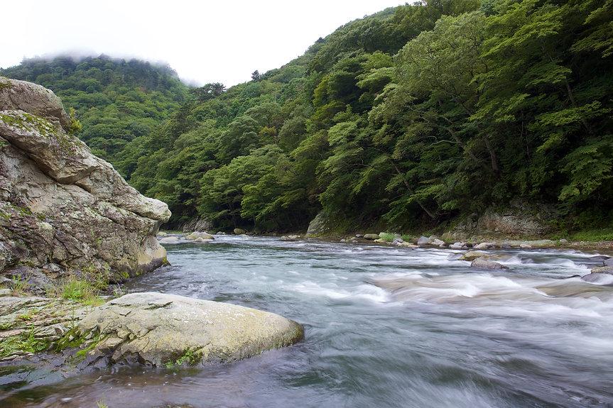 箒川2.jpg