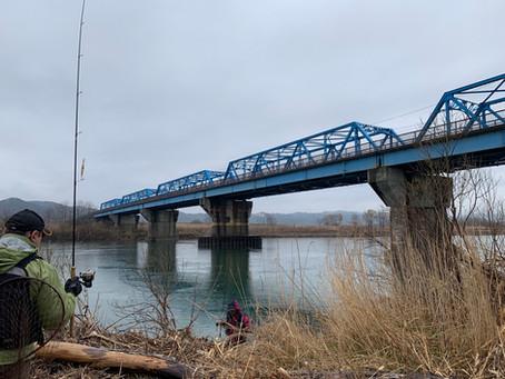 解禁日の富根橋