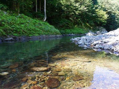 大野で、渓流魚を釣ろう!