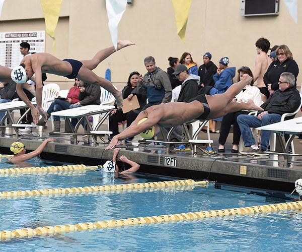 aquatic_swimBoys.jpg
