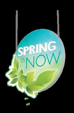 Spring_hanging1