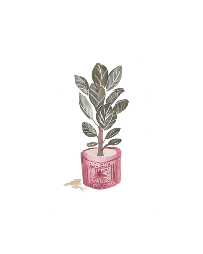 Red Pot.png