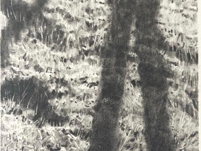 Tanya Wood: Sensation in Drawing, Materials, & More