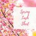 Spring Lash Shed