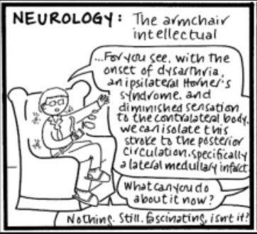"Neurologist cartoon as the ""armchair intellectual"""