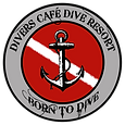 logo transparent BORN TO DIVE.png