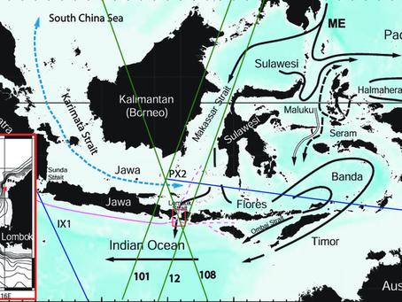 """L'""""Indonesian Throughflow"""" ou l'origine de la biodiversité marine indonésienne"""