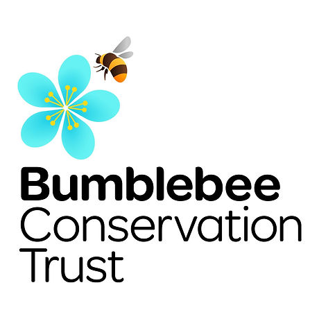 Bumblebee_conservation_trust.jpg