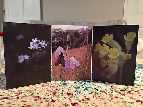Six pack fabulous flowers