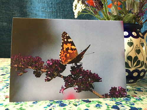 'Painted lady' greetings card
