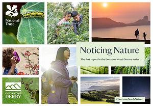 noticing_nature_national_trust.jpg