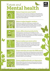 nature_and_mental_health_the_wildlife_tr