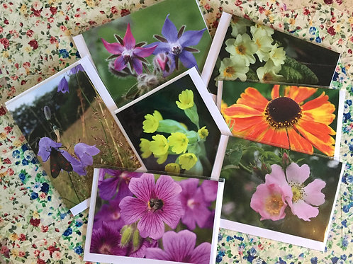 Set of seven Fabulous Flowers greetings cards