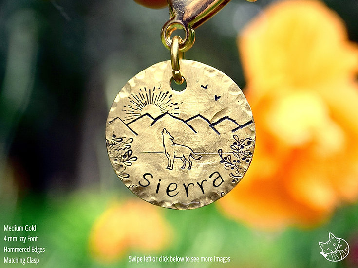Snow Dome Sunset Pet Tag