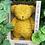 Thumbnail: Moonie Organic Humming Bear - Mustard