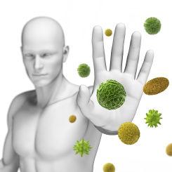 Immunstärkung, Immunstimulation, Immunsystem, Erkältung, Herpes, Ansteckung,