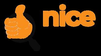 NICE FIND (Transparent).png