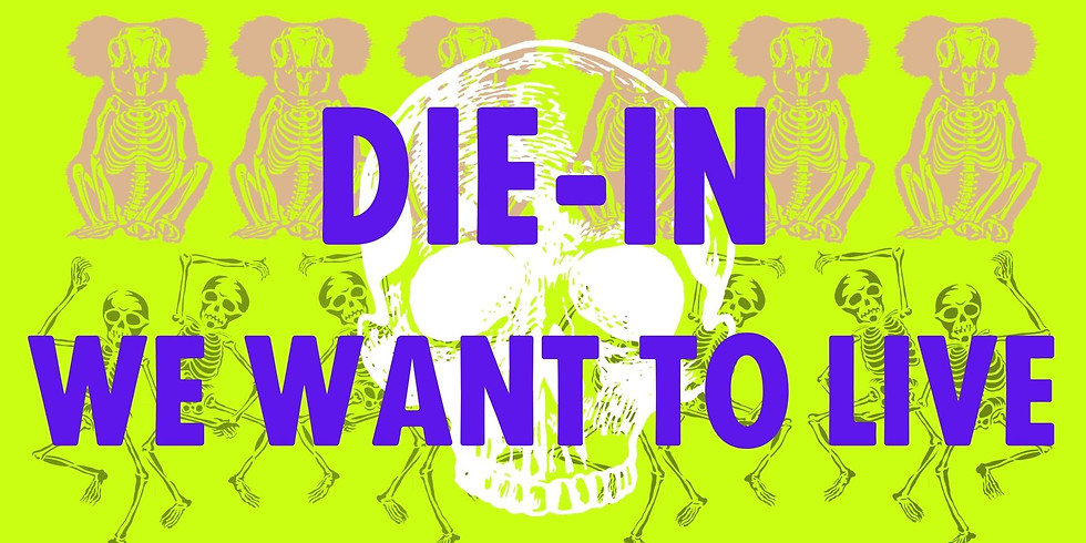 Die-In:  We want to live