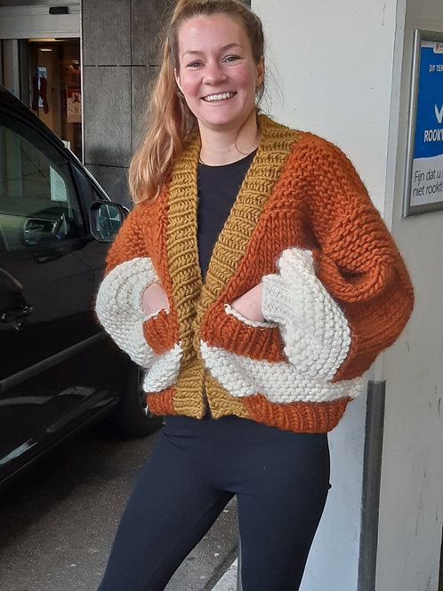"""Bomber, super chunky """"Crazy Sexy Wool"""" ."""