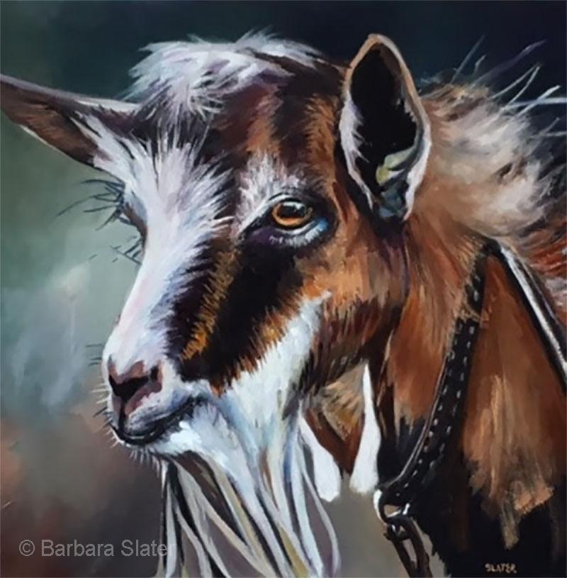 Mister Goat