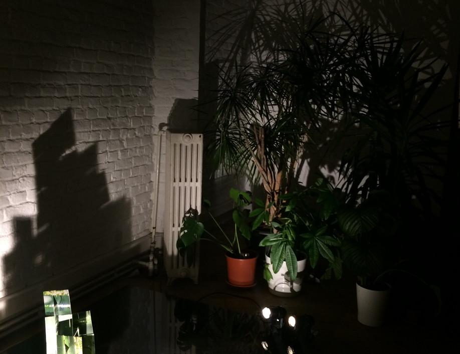 Sol Media Nocte