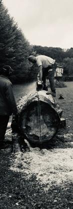 Le tronconnage