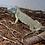 Thumbnail: El Salv. Blue Iguana 2020 2ft