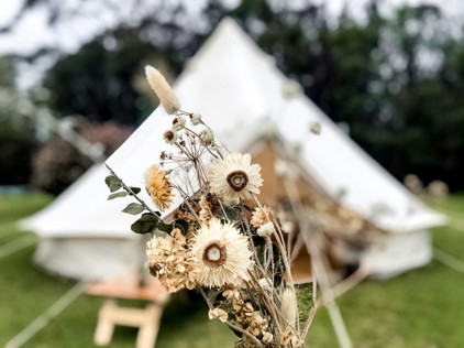 Dried Flowers with Glamping Tent