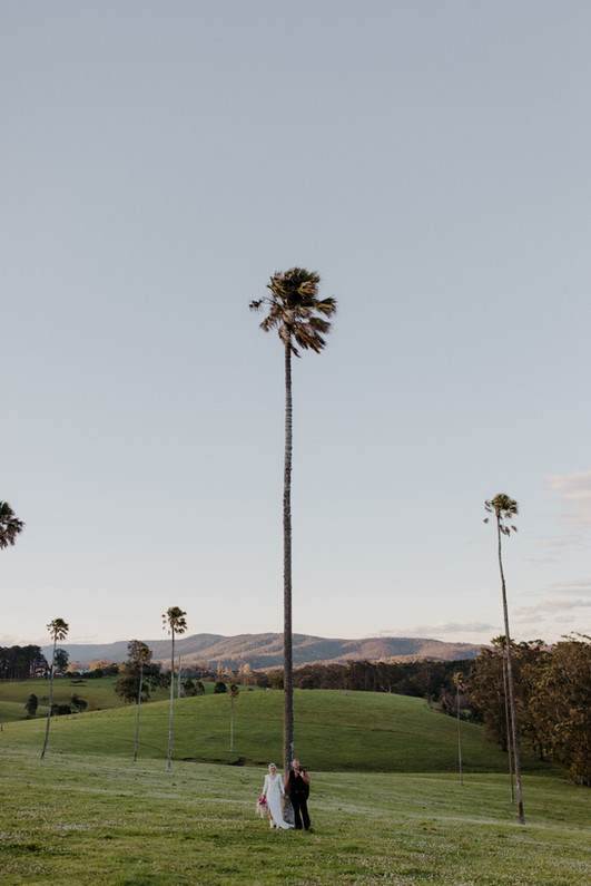 Couple Under Palm Trees