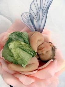 Baby rose faerie2.jpg