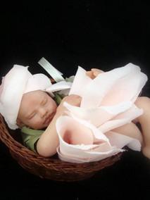 MBB-baby+Flower+Fairy-2.JPG