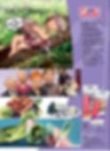 FIMO+Leaflet+with+Fairy.jpg