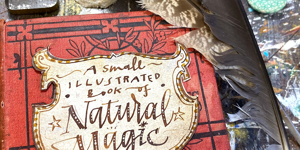 Build a Book Part 2: Fill your Magical Expanding Journal!