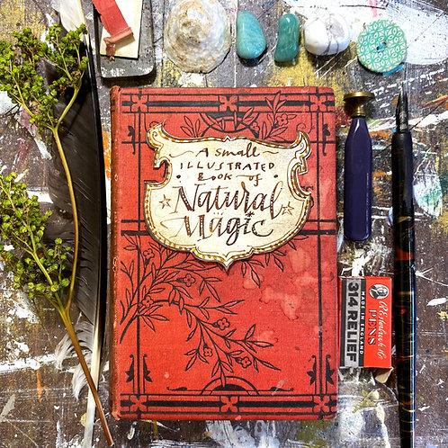 Build a Book Part 1: Make a Magical Expanding Journal!