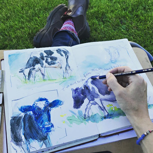 Sketching for Yeo Valley