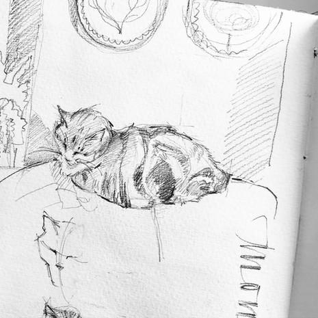Daily Sketchbook