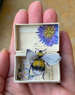 Buzz in a Box: Illustrated bee in a vintage ring box