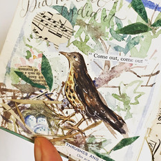 From the Illustrated Book of Bird Song