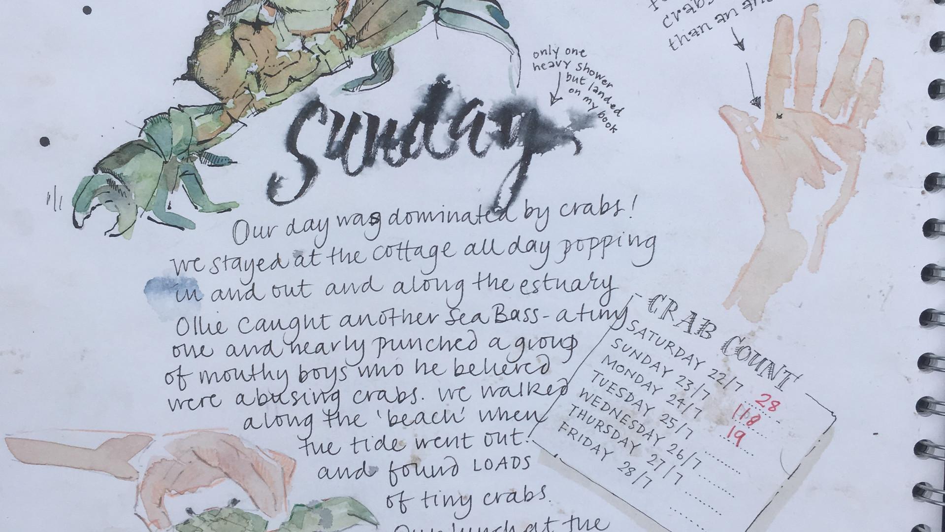Crab Journalling!