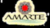 Logo%20Amarte%20sin%20fondo_edited.png