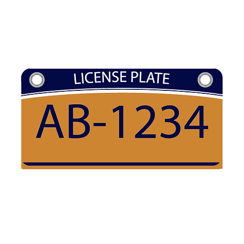 NYS Registration and Plates