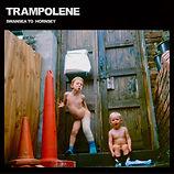 Trampolene, Swansea to hornsey, Debut album, artwork,
