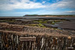 The Coast Path Way