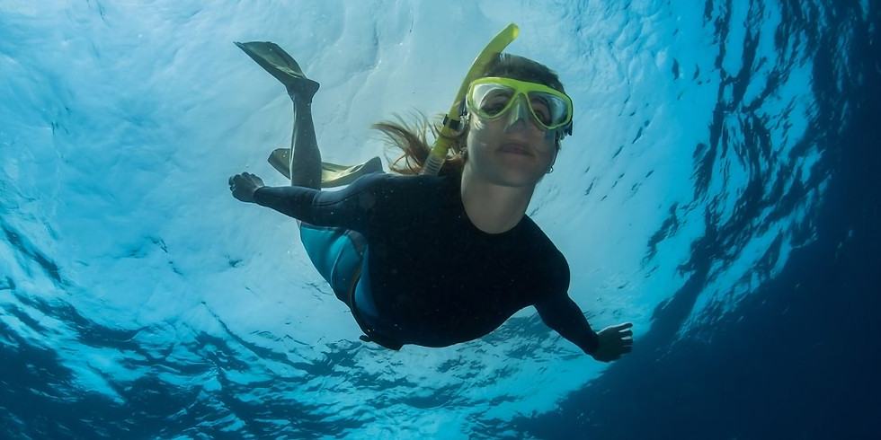 Freediving Introduction Course – Half Day