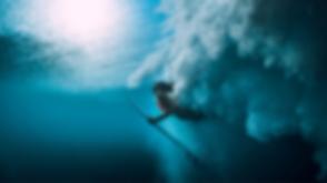 Optimized-Pics Survival Website.png
