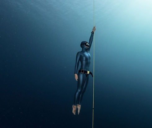 one diver line.jpg