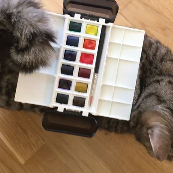 Palette Balancing on Cat