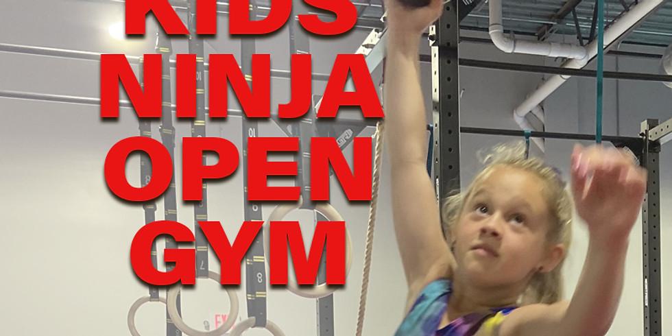 Kids Ninja Warrior Open Gym 4:30-5:30 PM  - $10
