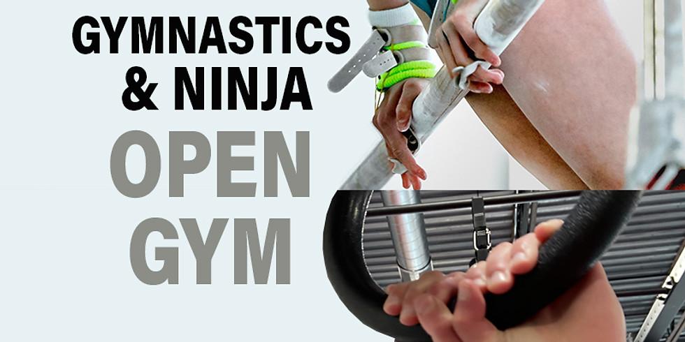 Open Gym! 10am