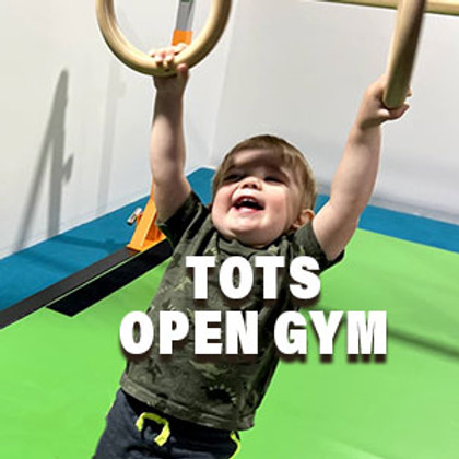 Tots Open Gym! 10-11 AM